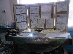Information and Awareness Stall